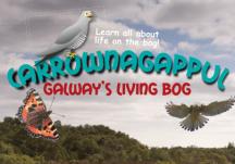 Carrownagappul bog