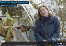 Meet the Head Gardener