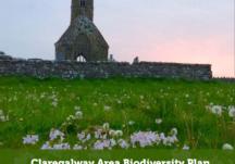 Claregalway Biodiversity Action Plan