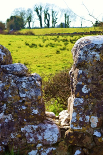 This stile is situated on a boithirin which links Doonaun and Corrandoo   Photo: Marian Hardiman