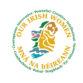 Our Irish Women
