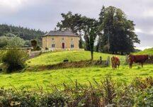 Herdsmen in County Galway